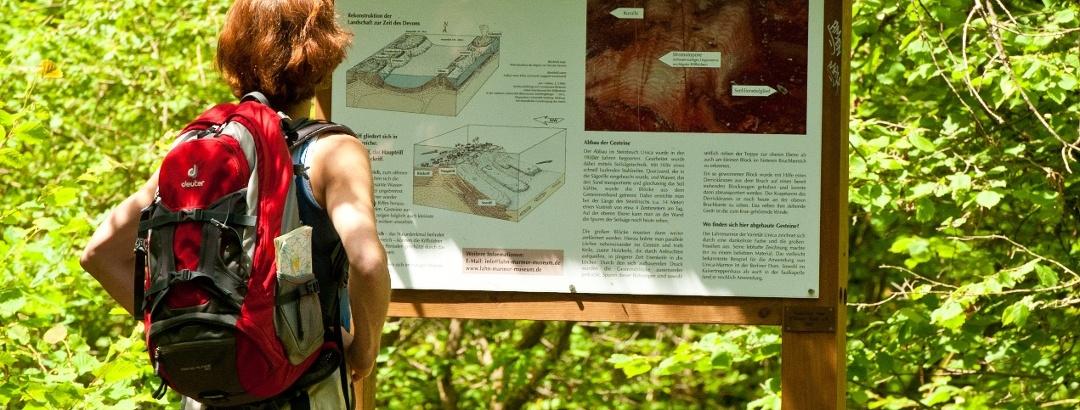 Die Geologie des Lahnmarmors