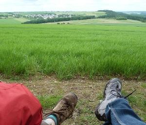 Fernsicht auf Herl und Thomm(Foto: Tourist-Information Ruwer, Quelle: Tourist-Information Ruwer)