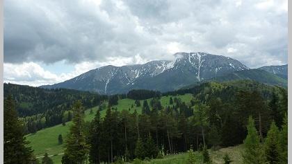 Schneebergblick vom Kammweg zwischen Schober und Öhler