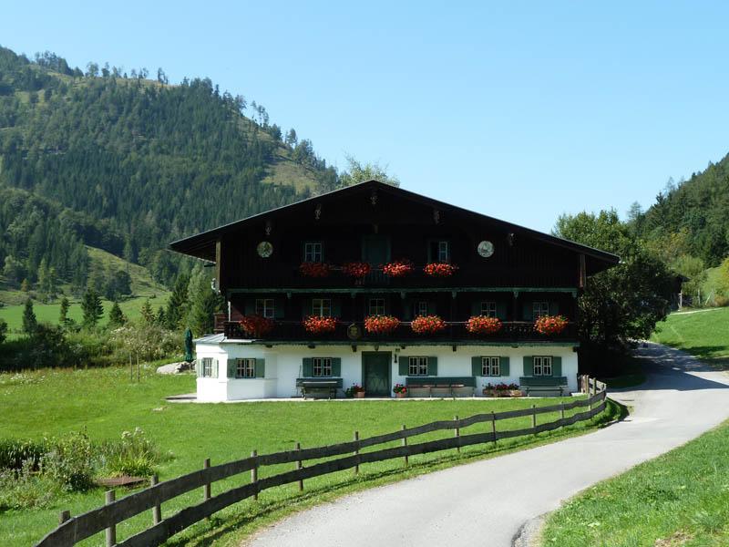 Rund um den Schwarzenberg - Wildgrub