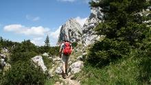 Grandiose Kammüberschreitung in den Ammergauer Alpen vom Kofel über den Feigenkopf bis zum Linderhof.