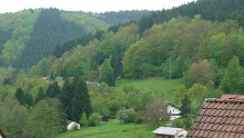 Rothenberg: Nordic Walking Tour - Von Finkenbach durch den Preuschengrund