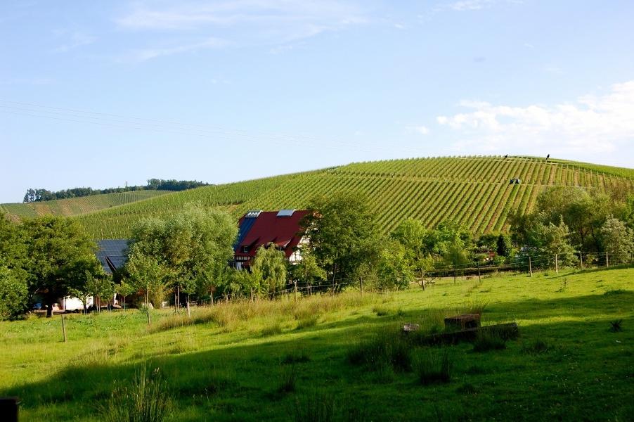 Durbach - In den Durbacher Ortsteil Brendel