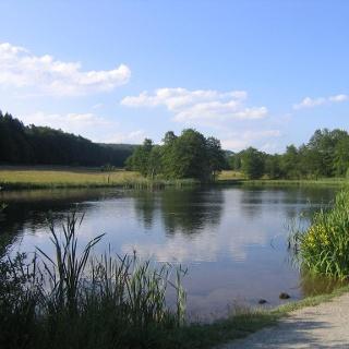 Naturschutzsgebiet Roberner See