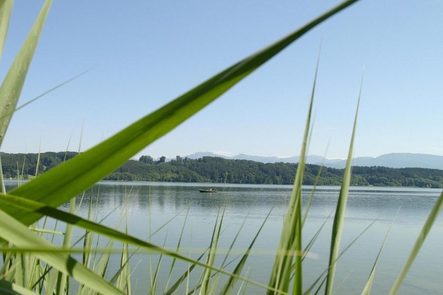 Wandern von Bad Endorf aus: Simssee-Moos