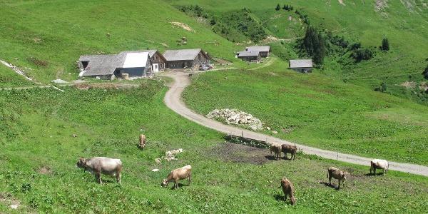 Walser Alpsiedlung Sentumalpe
