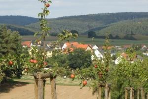 Streuobswiese (Foto: Armin Feulner, Quelle: Marburg Stadt und Land Tourismus)
