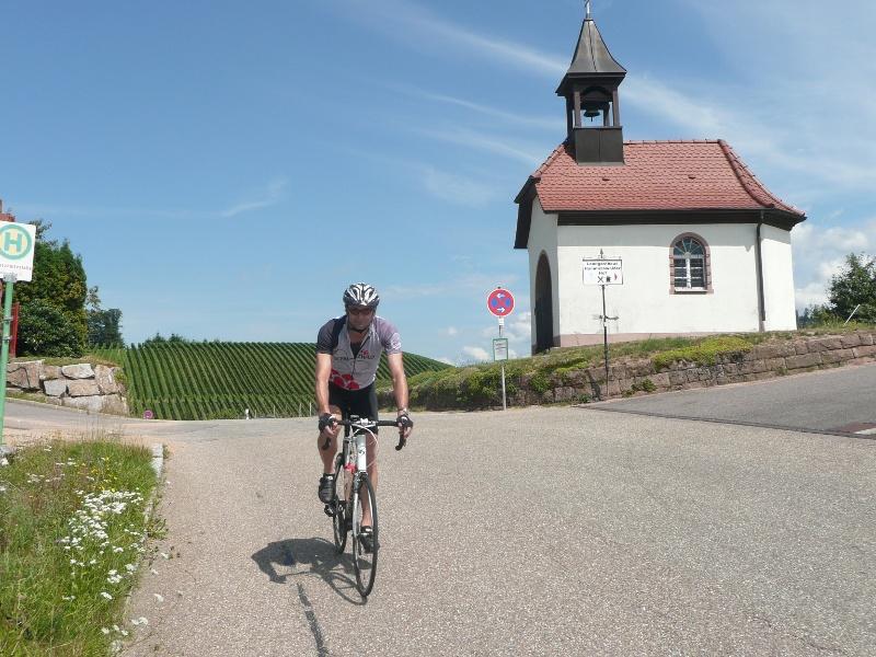 Oberkirch - Auf Wirtschaftswegen durch die Weinberge nach Gengenbach