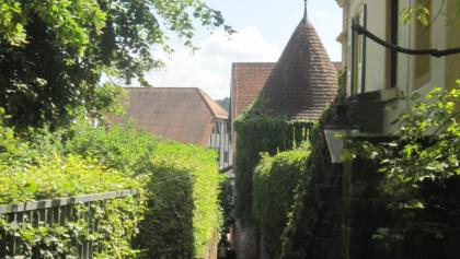 Stadtmauer Buchen
