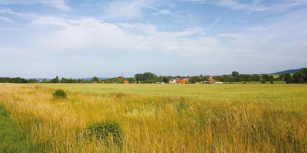 Blick auf Markoldendorf