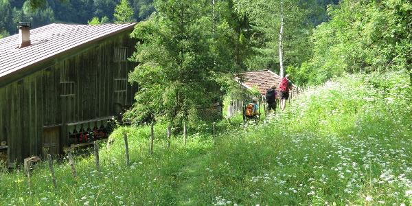 Im Großen Walsertal, wie hier am Wanderweg in der Nähe des Lutzbaches zwischen Sonntag und Garsella, können wir oft noch die Stille und Ruhe nachempfinden, welche schon in der zahlreich vorhandenen Reiseliteratur des 19. Jahrhunderts als wohltuend beschrieben wurde.