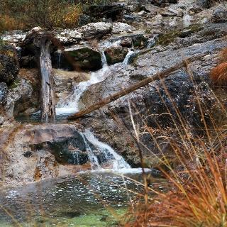 Ursprünglich ist die Natur am Dürrenstein (Copyright: weinfranz.at)