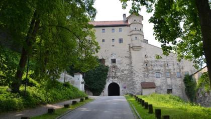 Eingang Willibaldsburg