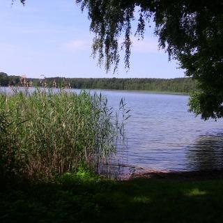 Badestelle Großer Tietzensee