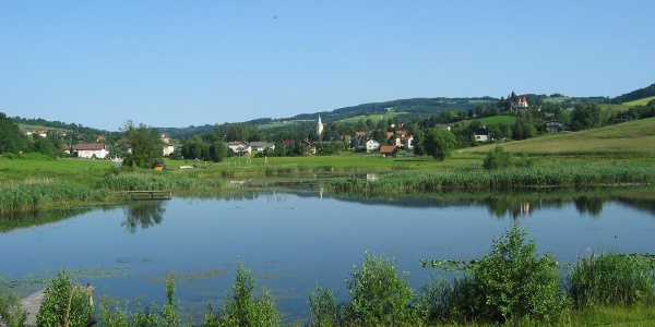 Teich in Krumbach   Bucklige Welt
