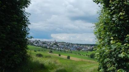 Blick auf Monzelfeld