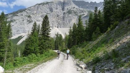 Knapp 2 Kilometer nach der Mösl Alm, zieht sich die Forststraße etwa 100 Höhenmeter durchwegs steil hinauf und ...