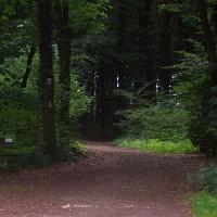 Hermannsweg in Lengerich