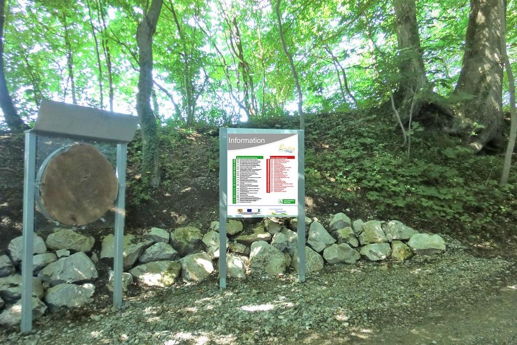 Station 1: Baumscheibe mit Infotafel