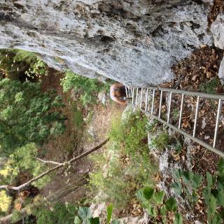 senkrechte Leiter am Fuße des Steiges