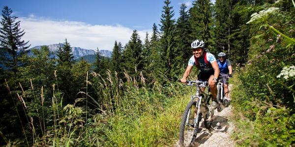 … zwischen Zinkenkogel und Berchtesgaden