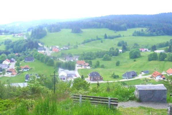 Dachsberg: Rundtour Wittenschwand 2