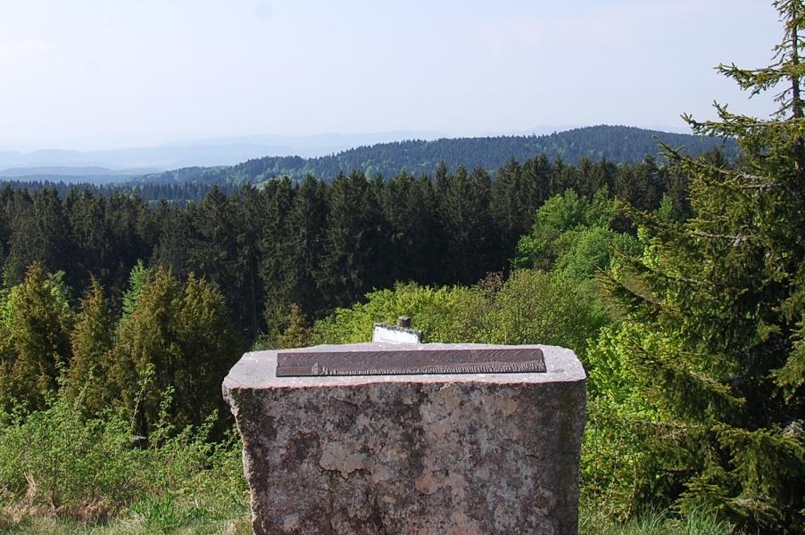 Dachsberg: Rundtour Wittenschwand 7