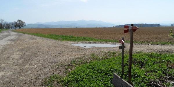 Feldwege führen durch das reiche Land.
