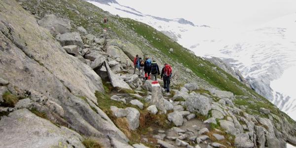 Der gesamte Weg verläuft oberhalb der orografisch linken Möräne des Obersulzbachkees.