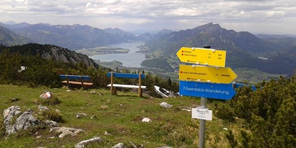 Schöner geht es nicht-Aussicht vom Gipfel des Hainzen zum Wolfgangsee.