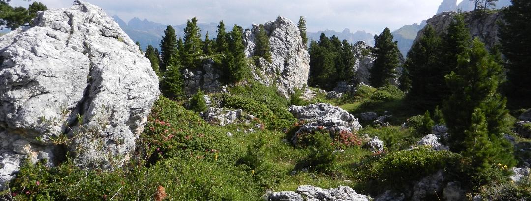 """In der """"Steinernen Stadt"""" am Sellajoch"""