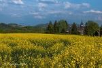 Foto Porschdorf