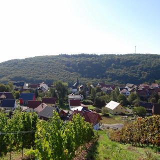 Blick auf Burgsponheim