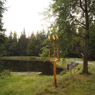 Schwarzer Teich