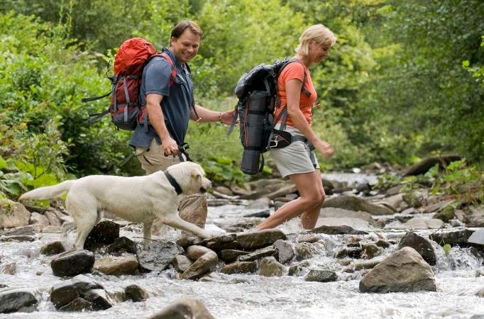 Foto Wandern mit Hund