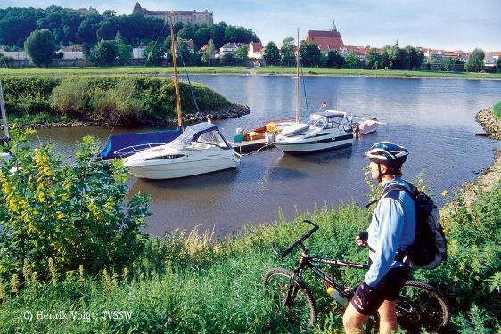 Foto Elbe in Pirna