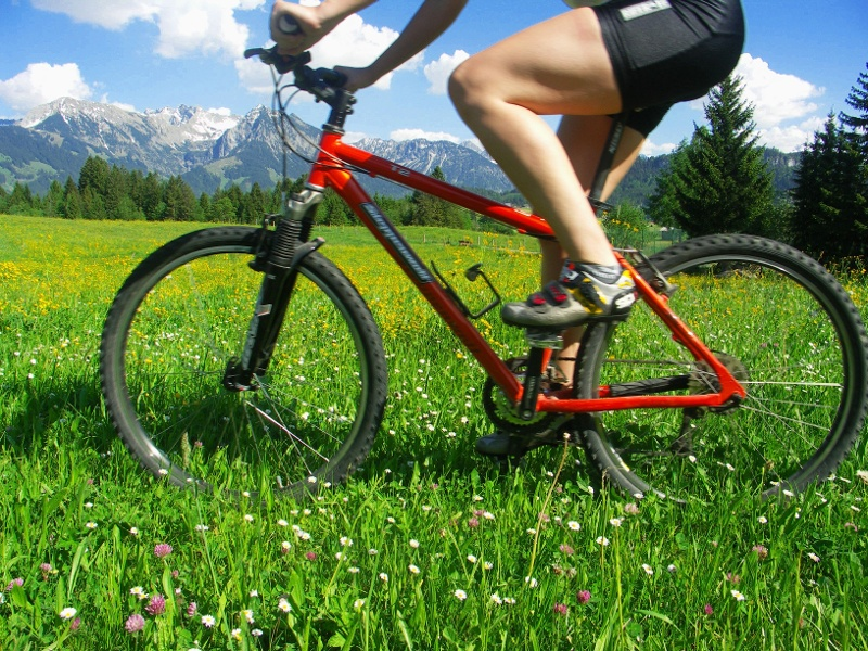 Von Elzach durch die hügelige Schwarzwälder Landschaft und zurück