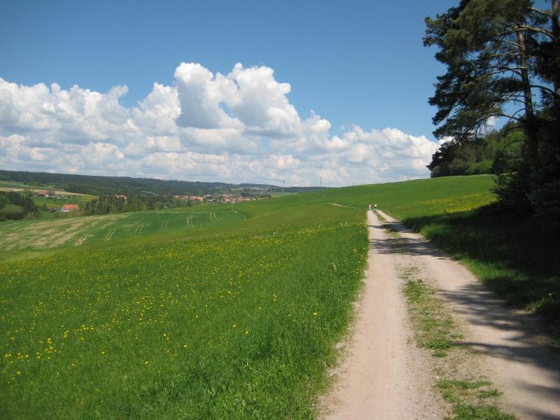 Albbruck: Über den Estelberg nach Unteralpfen