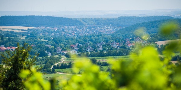 Blick auf Wallhausen vom Rastplatz Rotweinfreunde