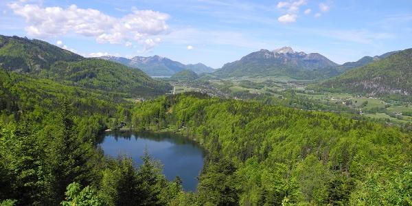 Mitten im Wald am Fuße der Katrin liegt der Nussensee.