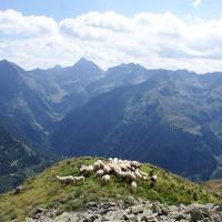 Blick von der Hasenkarspitze in Richtung Hochgolling