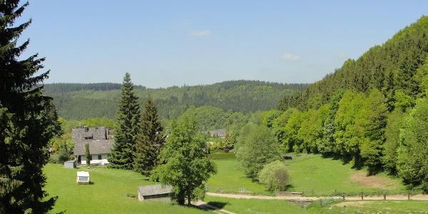Am Ortsrand von Oberhausen