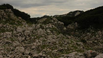 Hochfläche in der Nähe des Mitterbergs