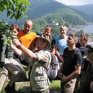 Rangerführung im Nationalpark Eifel
