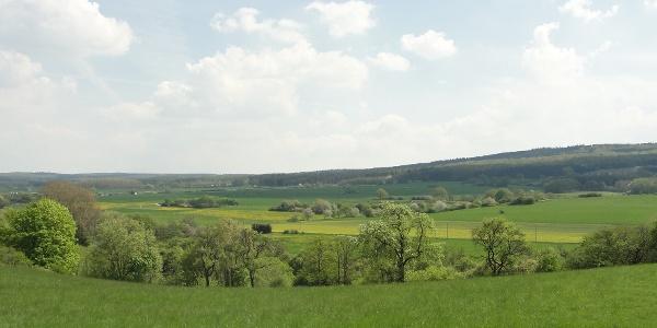 Zwischen Wachendorf und Arloff