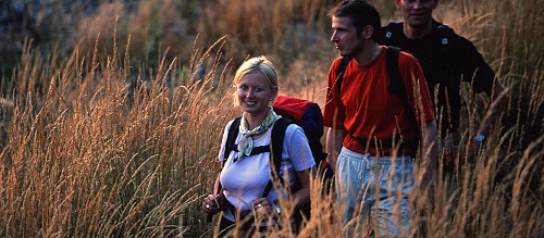 Brilon-Walder Gipfeltour (Qualitätstour)