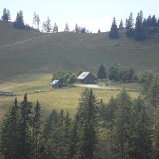 Blick auf die Schrottalm Hütte