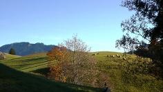 Wanderung Ammergauer Wiesmahdweg