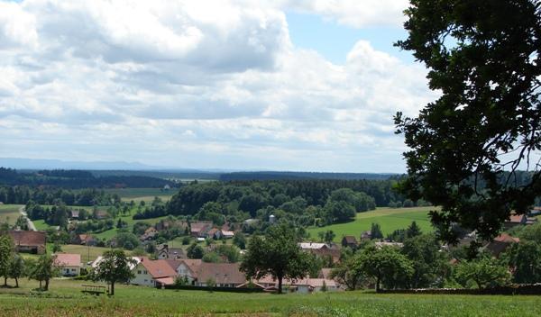 Naturpark-AugenBlick-Runde Zettelberg in Bad Teinach-Zavelstein