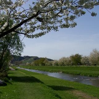 Renchdamm zwischen Oberkirch und Lautenbach